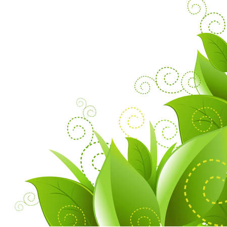 Leafs And Grass, Isolated On White Background, Vector Illustration Stock Vector - 11349764