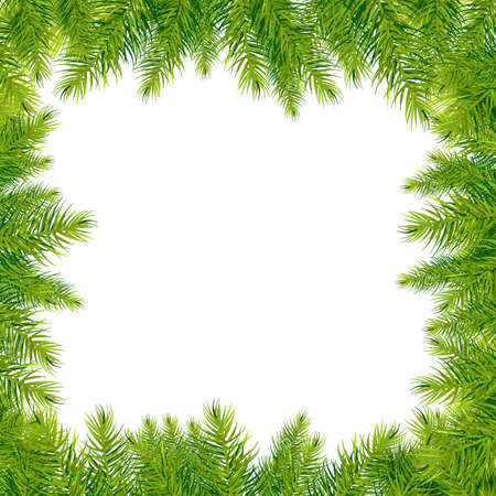 conifers: Christmas Tree Branches Border, Isolated On White Background, Vector Illustration Illustration