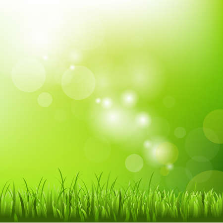 defocus: Green Background With Blur And Grass, Vector Illustration