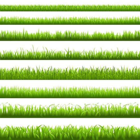 fide: Green Grass Borderi, Vector Illustration