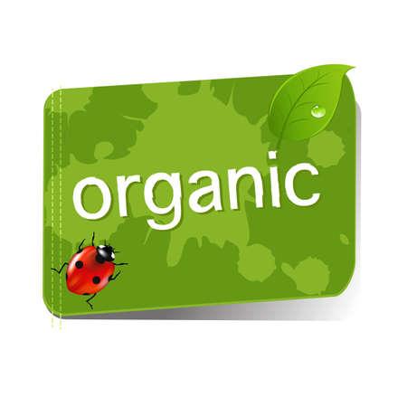 substitute: Organic Green Label  Illustration