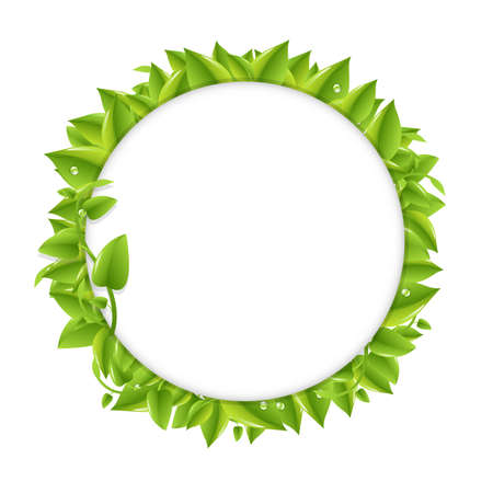 Circle With Green Leafs, Isolated On White Background, Vector Illustration  Vector
