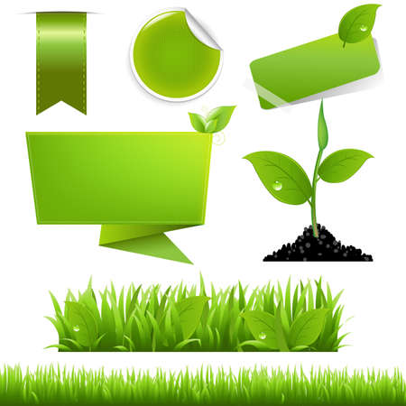 grass blade: Green Eco Set, Isolated On White Background, Vector Background
