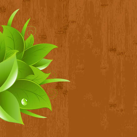 Wood Background With Leaf And Drops, Vector Illustration Vector