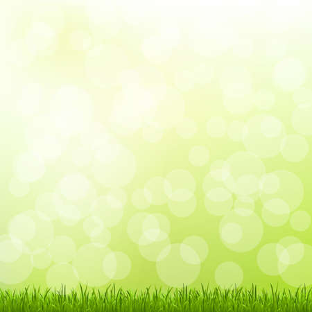 Green Grass And Bokeh And Blur Stock Vector - 13417275