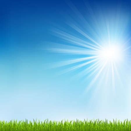 Green Grass And Sun Beam With Blur Stock Vector - 13417278