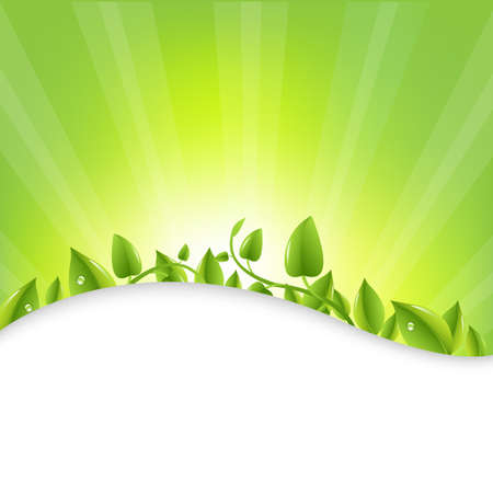 Green Leaves With Sunburst  And Rays Vector