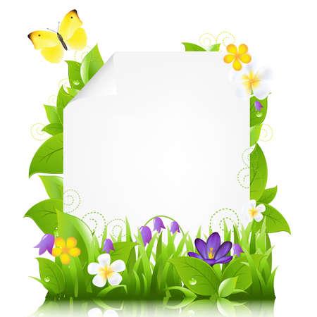 krokus: Papier met bloemen en bladeren, die op witte achtergrond, illustratie Stock Illustratie