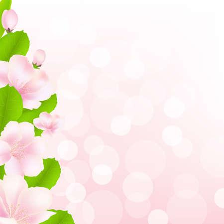 암술: 보케, 그림 사과 나무 꽃