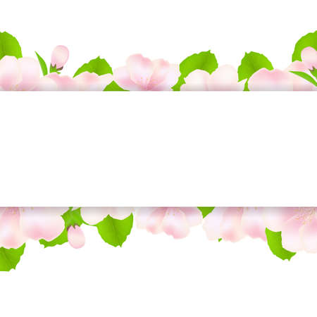 flower close up: Apple Tree Flowers With Paper, Isolated On White Background, Illustration