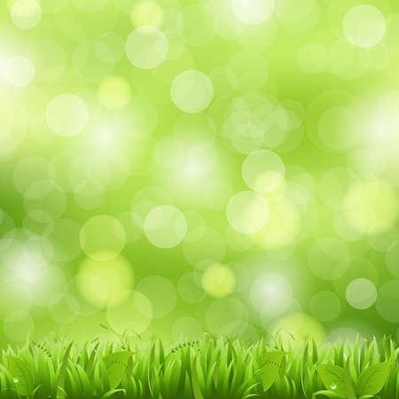 Nature Background With Grass And Bokeh,Illustration Vector