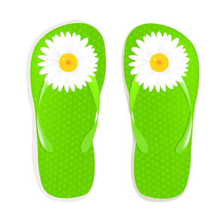 flip flop: Flip Flops With Camomile, Isolated On White Background