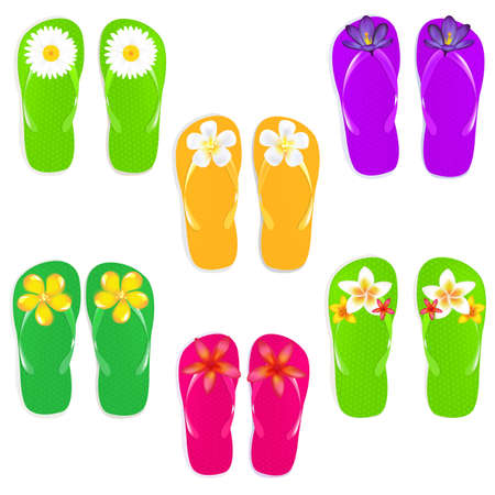 6 Flip Flops With Flowers, Isolated On White Background Vector