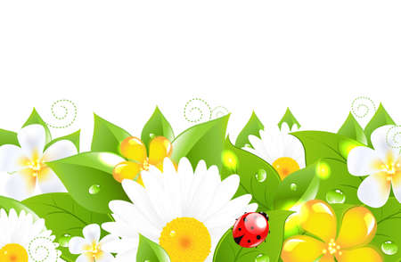 Flower Border With Ladybug, Isolated On White Background Vector