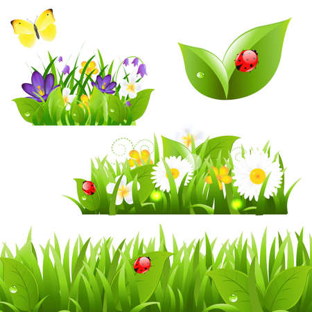 naturism: Flowers With Grass Butterfly And Ladybug, Isolated On White Background Illustration