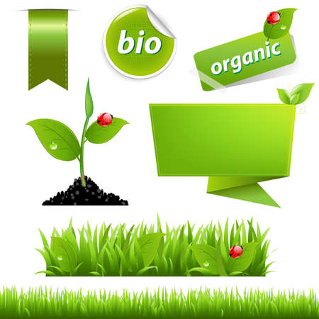 Green Eco Set met blad en lieveheersbeestje, op een witte achtergrond