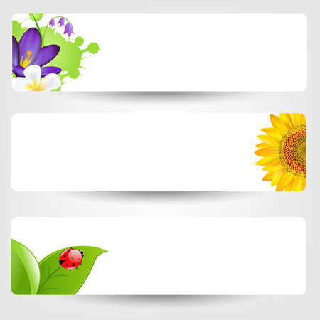 spring water: Banners With Flowers And Ladybug, Isolated On Grey