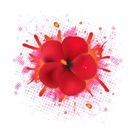 stigma: Red Hibiscus Flowers With Blob, Isolated On White Background, Vector Illustration