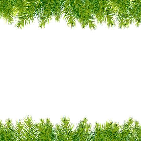 evergreen branch: Christmas Borders �rboles, aislados en fondo blanco Ilustraci�n,