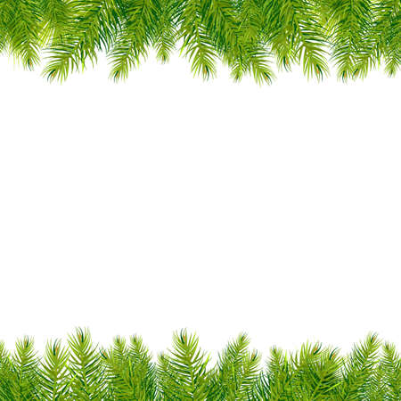 evergreen: Christmas Tree Borders, Isolated On White Background, Illustration Illustration