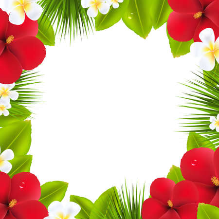 summer beauty: Green Border With Tropical Elements, Isolated On White Background
