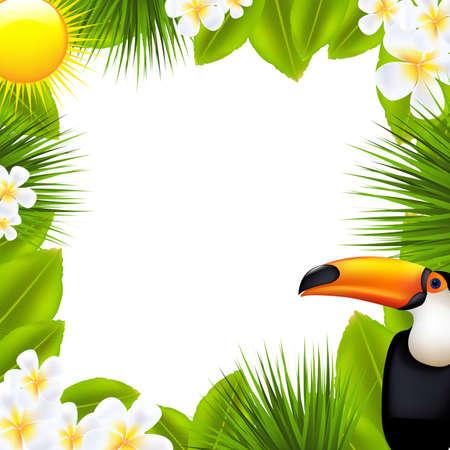 toekan: Groen Frame Met Tropische Elementen, Geà ¯ soleerd Op Witte Achtergrond