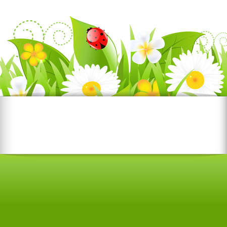 naturism: Poster With Grass Leafs And Ladybug, Isolated On White Background