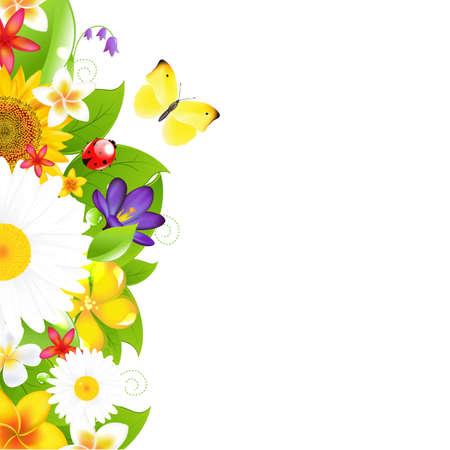 bordures fleurs: Fleurs d'�t� et � la fronti�re Feuille