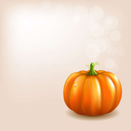 Orange Pumpkin With Bokeh And Blur Vector