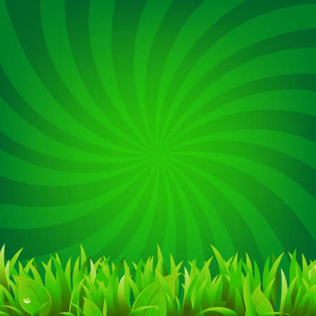 Beams And Green Grass With Gradient Mesh, Vector Illustration Stock Vector - 17476634