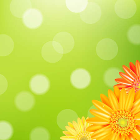 daisyflower: Green Nature Background With Yellow Gerbers With Gradient Mesh, Vector Illustration