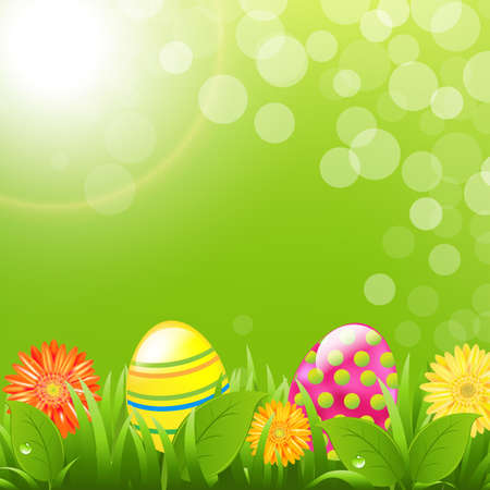 Green Border With Grass And Color Eggs With Gradient Mesh, Vector Illustration Vector