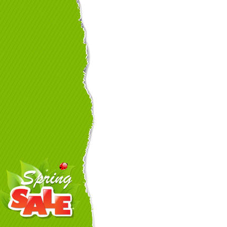 Green Torn Paper Borders And Sale Label With Gradient Mesh, Vector Illustration Stock Vector - 19372718