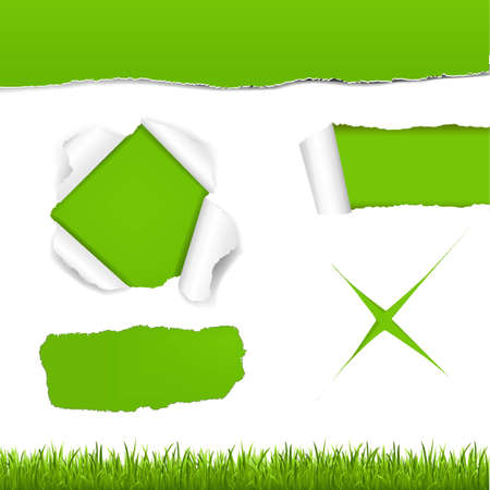 Green Torn Paper Set With Gradient Mesh, Vector Illustration Stock Vector - 19372729