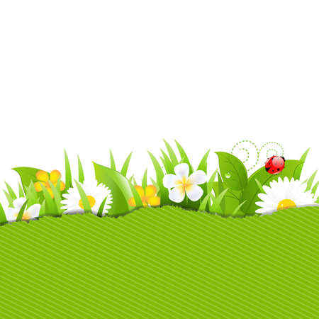 Green Torn Paper With Flowers And Grass With Gradient Mesh, Vector Illustration Vector