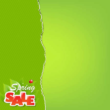 Green Torn Paper Borders And Sale Label With Gradient Mesh, Vector Illustration Stock Vector - 19802552