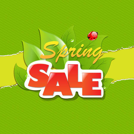 Green Torn Paper Borders And Spring Sale Banner With Gradient Mesh, Vector Illustration Vector
