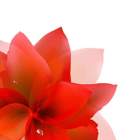 tulipe rouge: R�sum� Tulipe rouge avec filet de d�grad�, vecteur Illustration