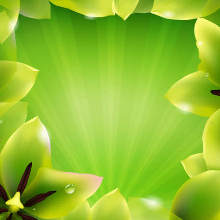 Border Of Green Tulips And Sunburst With Gradient Mesh, Vector Illustration Stock Vector - 22401699