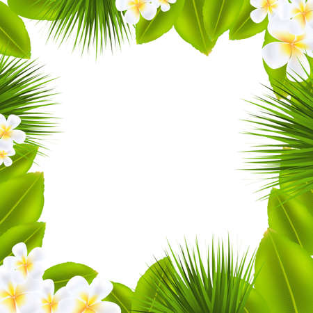 Frame With Frangipani And Leaf With Gradient Mesh, Vector Illustration