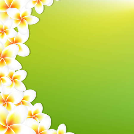 White Frangipani Border With Green Background, With Gradient Mesh, Vector Illustration
