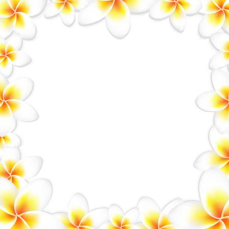 White Frangipani Frame, With Gradient Mesh, Vector Illustration