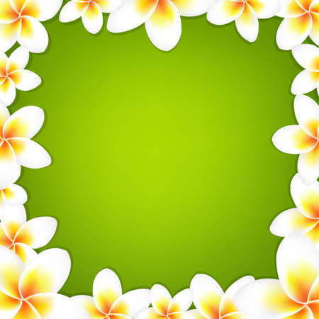 White Frangipani Frame With Green Background, With Gradient Mesh, Vector Illustration