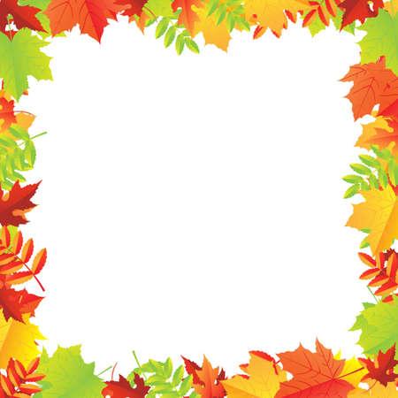Colorful Autumn Leafs Frame, Vector Illustration Vector