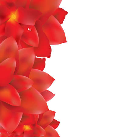 Red Flowers Border, With Gradient Mesh, Vector Illustration Vector