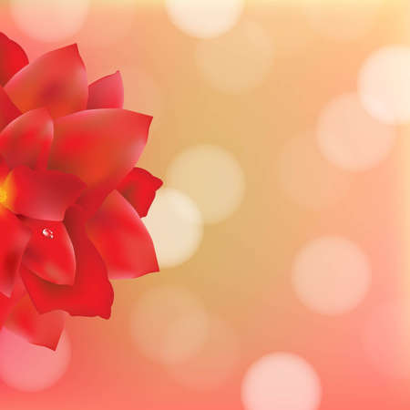 Red Flower With Water Drops Bokeh, With Gradient Mesh, Vector Illustration Vector