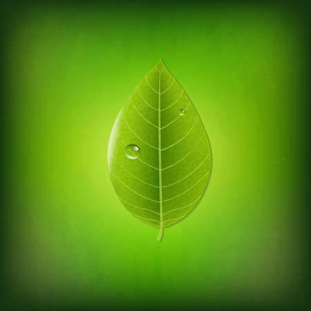 vegetate: Grunge Green Background With Green Leaf, With Gradient Mesh, Vector Illustration