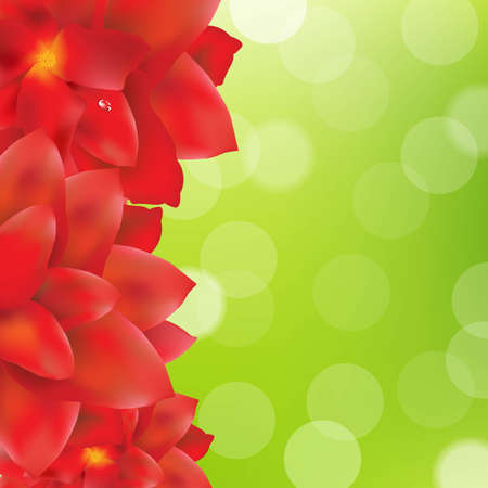 Red Flowers Border With Green Bokeh, With Gradient Mesh, Illustration Vector