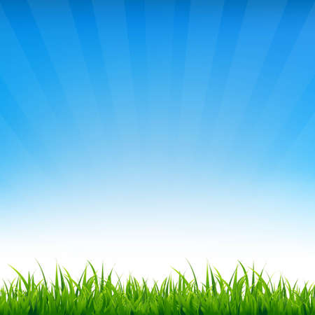 farm land: Blue Sky With Grass, With Gradient Mesh, Vector Illustration