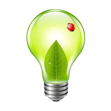 Eco Bulb With Ladybug, With Gradient Mesh, Vector Illustration Vector
